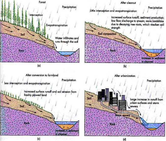 Natural resources agriculture and soil erosion for Soil erosion causes
